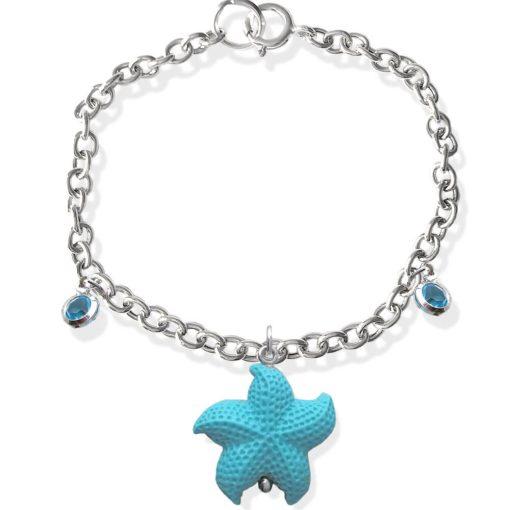 stella marina braccilale 2
